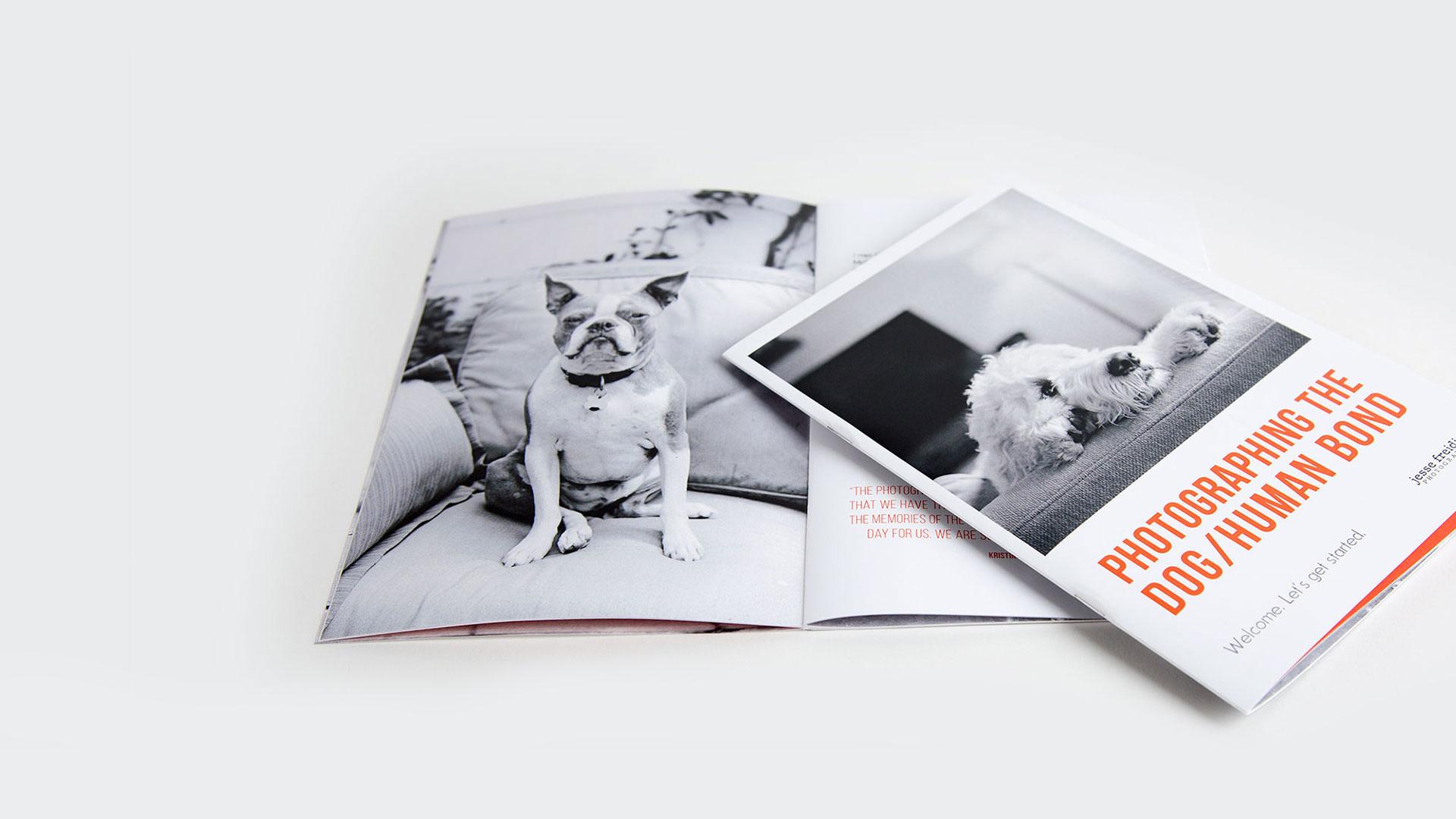 Saddle Stitch Booklet Printing : Smartpress